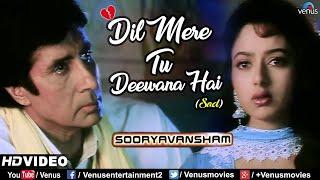 Dil Mere Tu Deewana Hai-Sad | Amitabh Bachchan & Soundarya | Sooryavansham | 90's Bollywood Sad Song