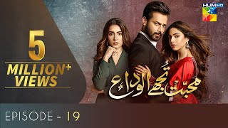 Mohabbat Tujhe Alvida Episode 19 | Digitally Powered By Master Paints | HUM TV Drama 21 October 2020
