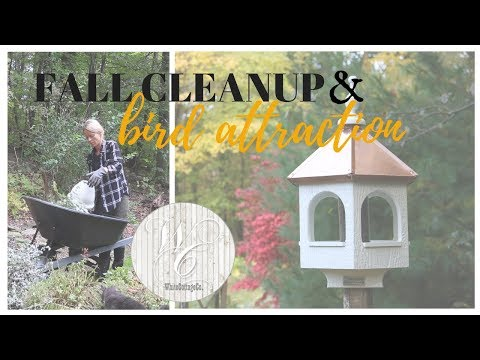 Fall Outdoor Cleanup, Bird Station, Outside Winter Prep, Bird Attraction