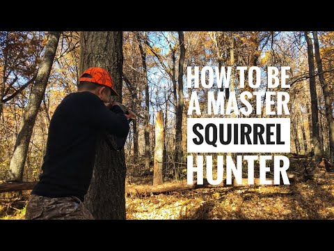 Squirrel Hunting Tips: How To Be A Master Squirrel Hunter