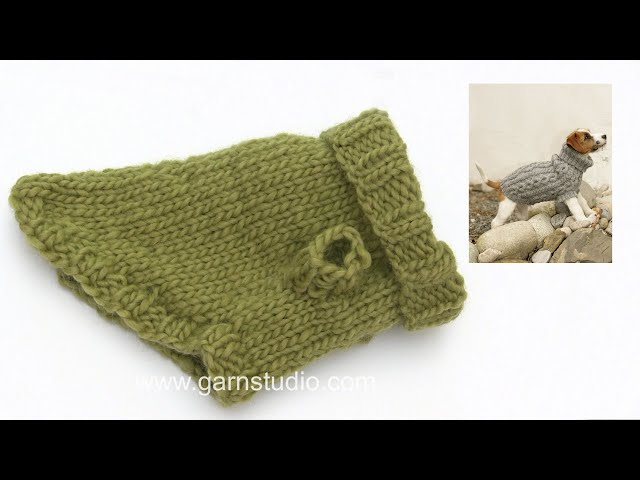 How to knit a dog coat YouTube