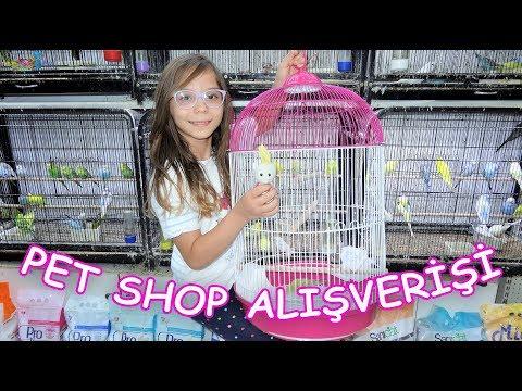 PET SHOP Alışverişi (Hangi evcil hayvanları aldık isimlerini ne koyduk?) Eğlenceli Çocuk Videosu