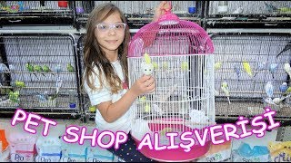 Pet Shop Shopping - Which pets we bought and what did we put their names on? Funny Kids Video