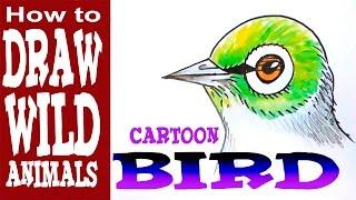 How to Draw a Bird (beginner)