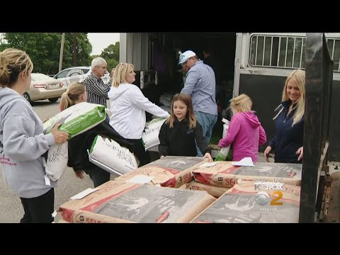 Pittsburgh-Area Agricultural Business Taking Feed, Supplies To Texas