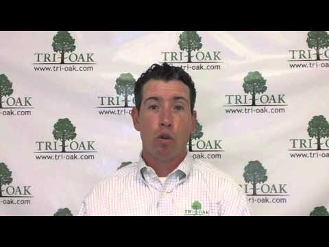 Fred's, Inc. - Company Overview & Lease Structure