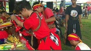Lagu 🎶 Ayah versi Jathilan kembang mudho Budoyo Ft wadyo bolo singo barong ndadi