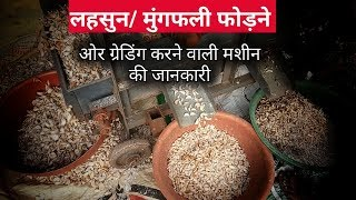 लहसुन / मूँगफली फोड़ने और ग्रेडिंग करने वाली मशीन | Garlic and peanut grading machine
