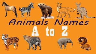 A to Z animals name for kids all time gallary