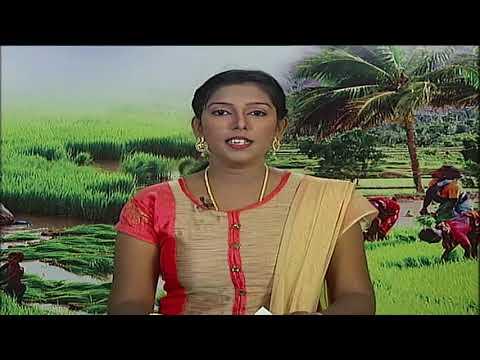 Pon Vilaiyum Bhoomi 01/02/2018
