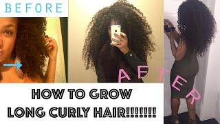 HOW TO GROW LONG CURLY HAIR