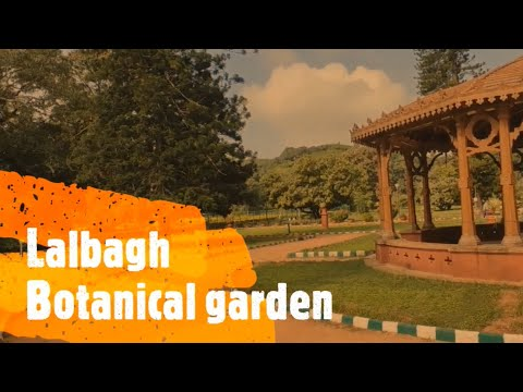 Lalbagh Botanical Garden Bangalore Full Tour🌳🌳🌲 | Lalbagh park | A must visit place in Bangalore