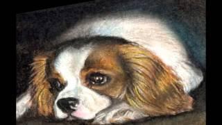 """В. Моцарт """"Турецкий марш""""  (Красивые собаки)"""