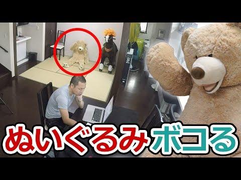 【ドッキリ】クマのぬいぐるみが突然殴りかかってきたら恐ろしすぎた