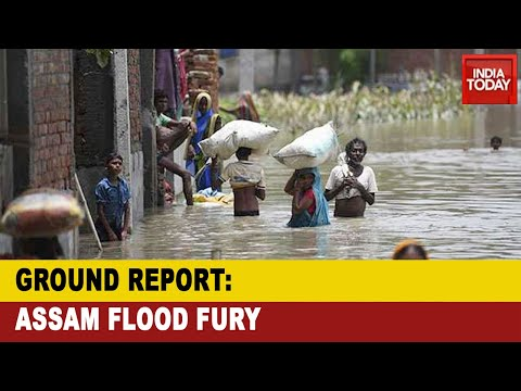 Assam Floods: Thousands Displaced, Over 100 Animals Died As Assam Flood Fury Continues|Ground Report