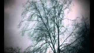 Rüzgar sesi  doğa sesleri
