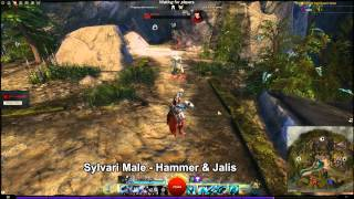 GW2 Revenant Skill animations on all races and genders