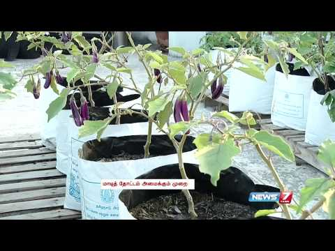 Tips for setting an organic vegetable garden on the ter for Terrace krishi
