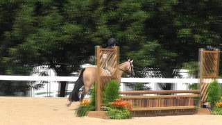 Video of ARNABY BODACIOUS ridden by MADELEINE FLOCKS from ShowNet!