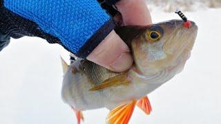 ПЕРВЫЙ ЛЕД НА МАЛОЙ РЕЧКЕ Открытие сезона 2020 2021 рыбалка на безмотылку