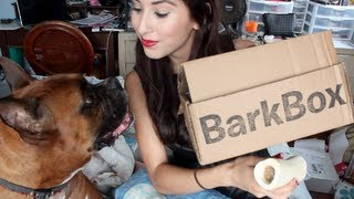 Barkbox Review April 2013 - Subscription Box for Dogs! thumbnail