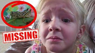 Help Find Mr. Shortlegs! My Pet Grasshopper is MISSING!