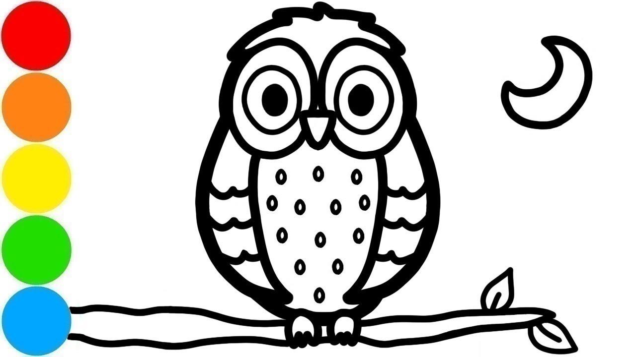 Cara Menggambar Dan Mewarnai Burung Hantu Di Cabang Untuk Anak Youtube