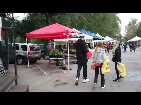 Natural Homestead Beef at Boulder County farmers market