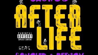 ch ng3 after life feat squalid beejan album cover preview