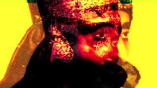 Zion Swang (New Album) - 01 Swang Ina Dub (Noël Akchoté)