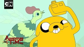 Treasures Revealed | San Diego Comic Con | Adventure Time | Cartoon Network