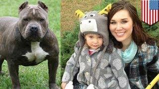 Женщина откусила питбулю ухо, спасая 2-летнюю дочь(2-летняя Маккензи Пласс, перенёсшая несколько операций после нападения собаки в марте этого года, поправляе..., 2014-05-01T03:26:45.000Z)