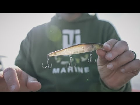 How To Fish A Jerkbait For 3 Species Of Bass