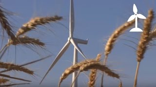 Harvesting a New Crop Part III - A Cleaner Energy Future