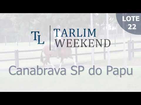 Lote 22 - Canabrava Sp do Papu (6º Leilão Tarlim)