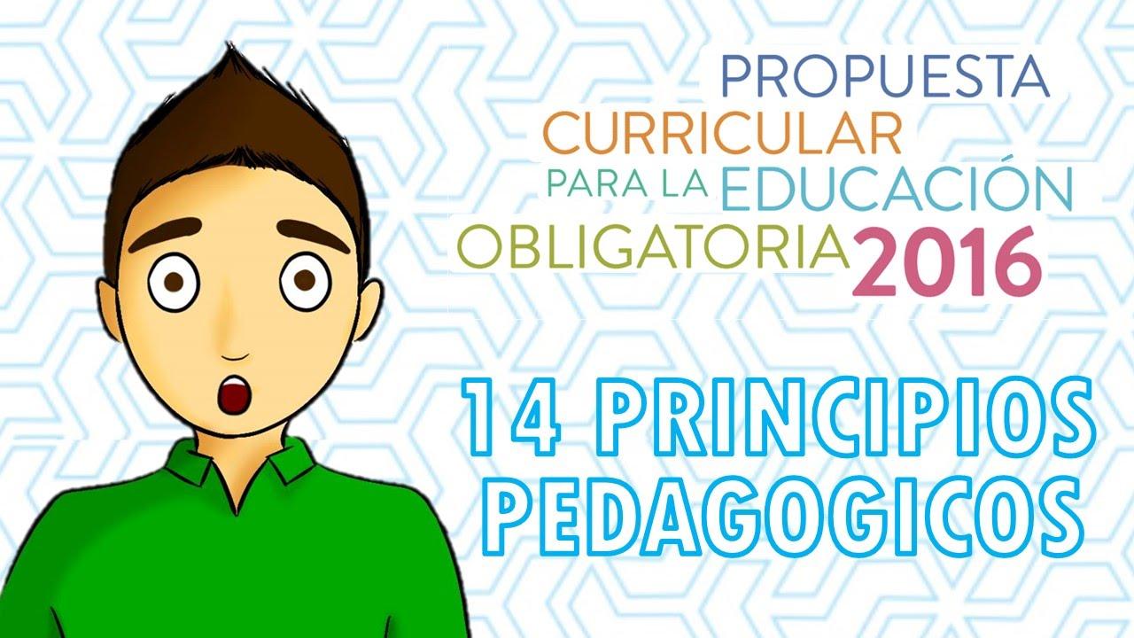 14 PRINCIPIOS PEDAGÓGICOS 2016 - YouTube
