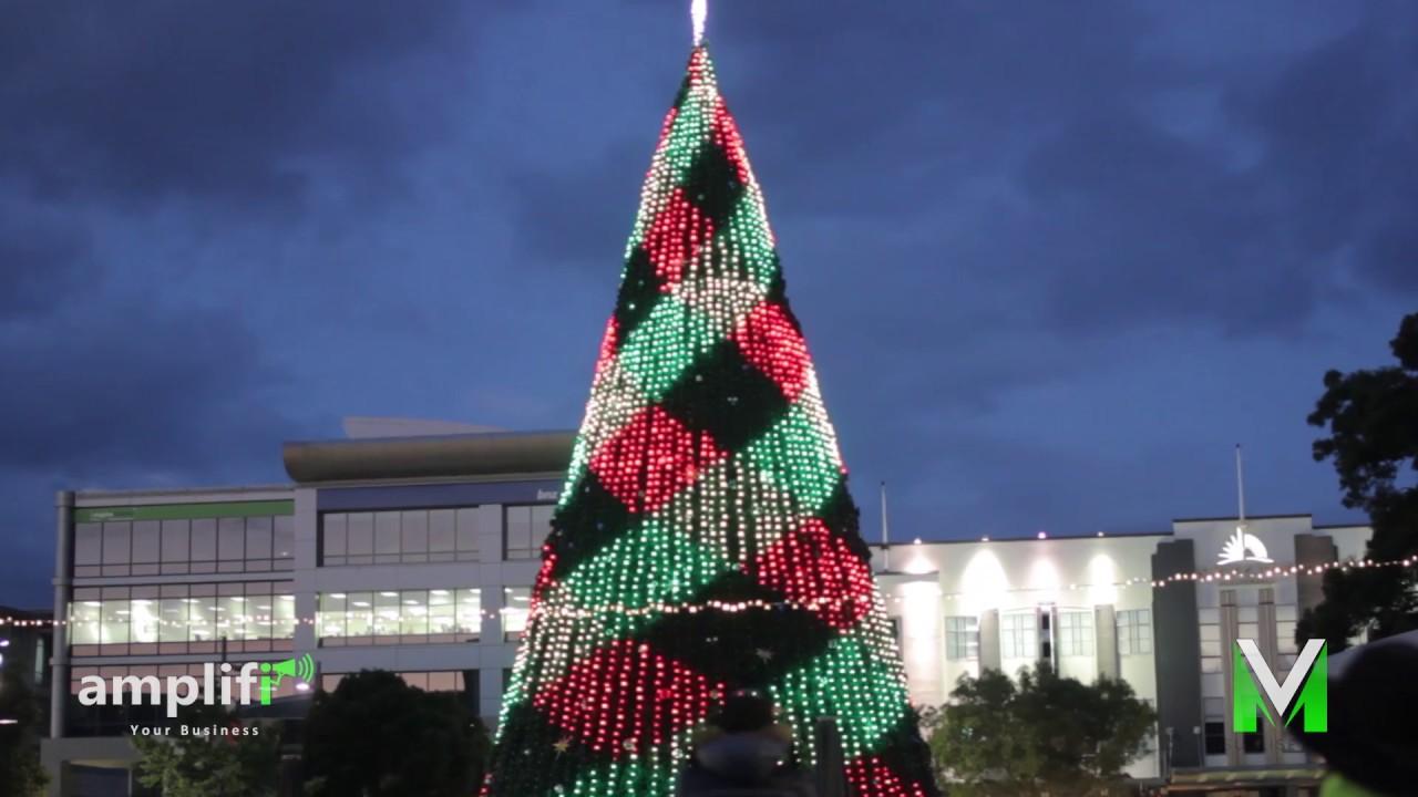 christmas tree lighting garden place hamilton