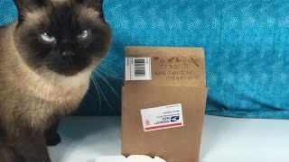 fan mail opening 2 plus blind bag unboxing lps tmnt frozen jelly belly surprise eggs