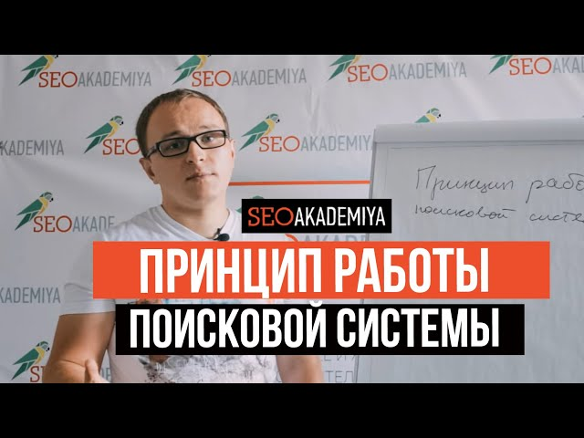 Принцип работы поисковой системы. Павел Шульга (Академия SEO)