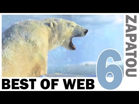 crazy-best-of-web-compilation-video-6