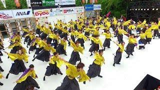 Journeys in Japan 〜Kochi's Summertime Fever: The Yosakoi!〜