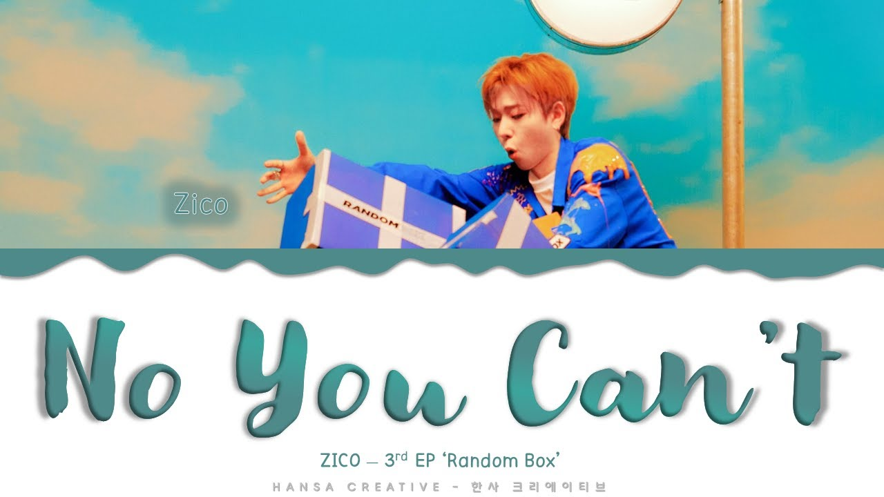ZICO - 'No You Can't' Lyrics Color Coded (Han/Rom/Eng)