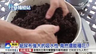 紙尿布強大的吸水性 竟然還能種花!?│中視新聞 20160731