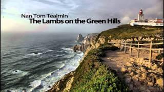 Nan Tom Teaimin - The Lambs on the Green Hills