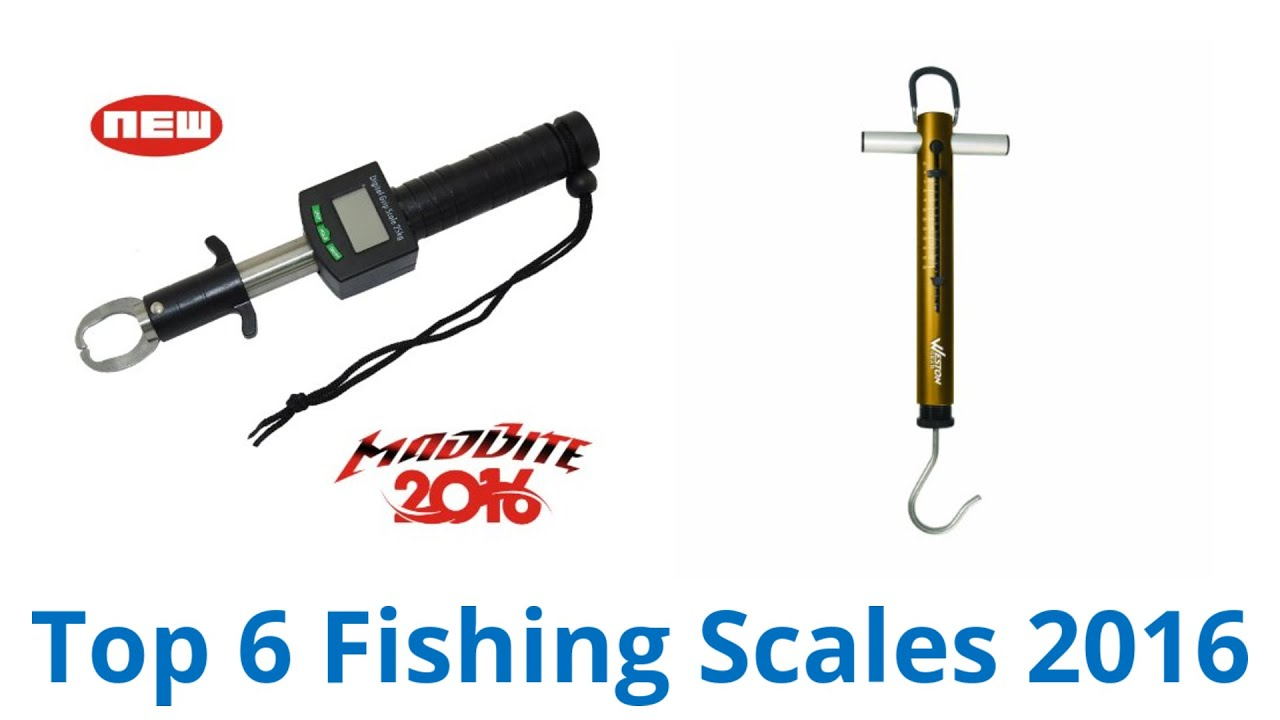 6 best fishing scales 2016 youtube