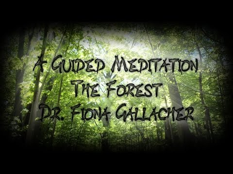 GUIDED VISUALIZATION  A WALK IN THE FOREST  DR FIONA GALLACHER