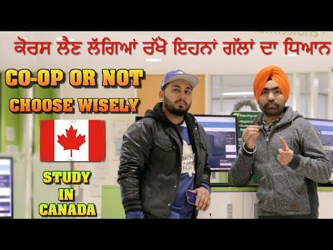 CO-OP courses inn Canada | Canada Study Visa | 2019