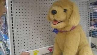 2008-fake dog toy