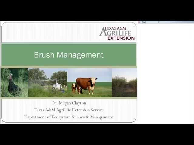 Wildlife for Lunch - June 2015 - Targeting Common Brush Species