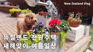 Sub) 뉴질랜드 여름일상/여름 가드닝/열무김치국수/팥…